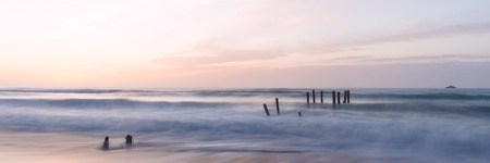 clair: old jetty piles at St. Clair Beach in Dunedin at dawn Stock Photo