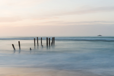 clair: Old jetty piles at St. Clair Beach in Dunedin at dawn