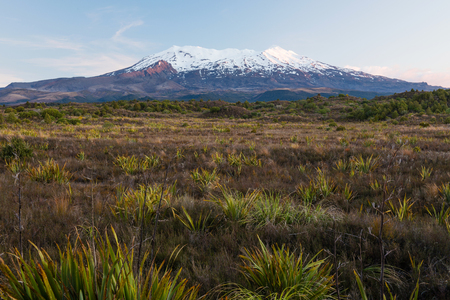 newzealand: Mount Ruapehu - highest point in the North Island at sunset, New Zealand