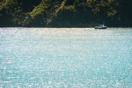 new zeland: Small boat sailing in the sea gulf, New Zeland Stock Photo