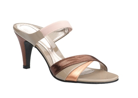 A luxury high heel shoe for beautiful lady Stock Photo - 16806575