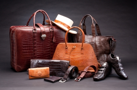 Set of products which made of crocodile leather Archivio Fotografico