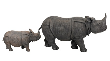 cray: Beautiful cray rhino and calf