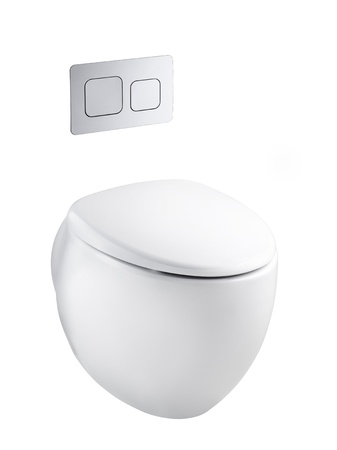 water closet: Modern designed of ceramic toilet bowl and economic flush press with two separate buttons