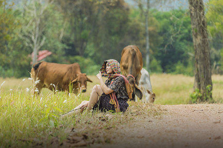 Women and cows in green pastures