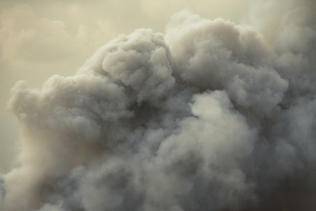 Dense white smoke rising from the raging wildfire,smoke background,close up swirling white smoke background. Banco de Imagens