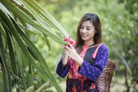 Happy farmer in the field checking  plants during a sunny summer,Greengrocer organic fresh agricultural,Lisu women wear Lisu traditional dress to present them tribe in Thailand Zdjęcie Seryjne