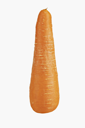 Carrot isolated on white background,Carrot top view. Perfectly retouched top view of carrot isolated on white background.