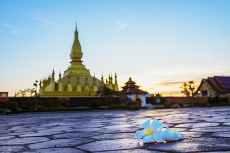 Wat Phra That Luang, Vientiane, Lao PDR.Top view of Laos,Landmark ,landscape and terrain in Laos,Traditional culture.