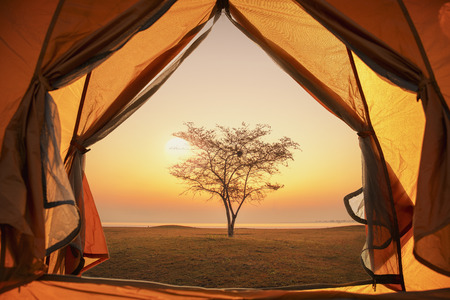 Tourist tent on the beach, camping at sunset on the sea.Camping under the trees by the sea with sunset.Picturesque landscape sunset river horizon silhouette.