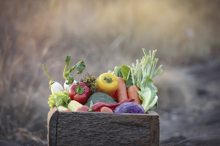 Fresh organic vegetables. Food background. Healthy food from garden. Adult Farmer Holding Fresh Local Vegetable.Vegetables on wooden background. Bio healthy organic food, herbs and spices.