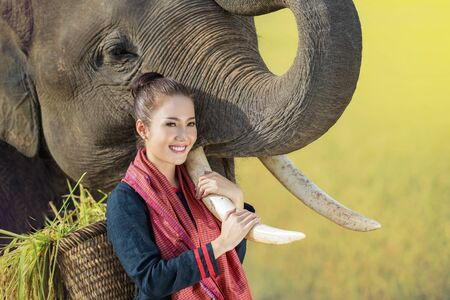 Love, bonding of people and elephants. Mahout. Thai woman with elephant.Thai elephants in Chiang Mai, Thailand. 版權商用圖片