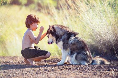 Little boy and the dog. Love and friendship concept.