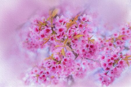 Colorful  watercolor painting of pink flowers in a white background.