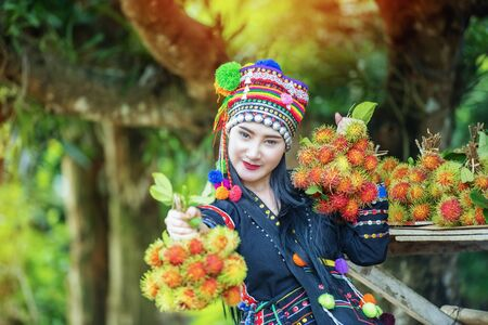 Hilltribes and rambutans in the harvest season.