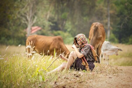 Farmers raising cows on open farms in the countryside. Stock Photo