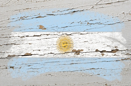 argentinian flag: Chalky argentinian flag painted with color chalk on grunge wooden texture