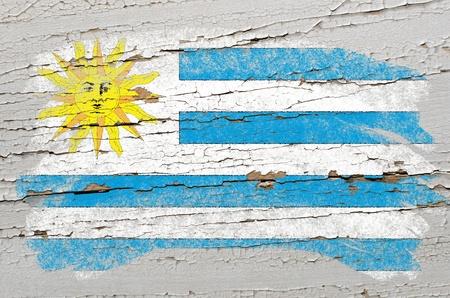 bandera de uruguay: Bandera de uruguay calc�rea pintada con tiza de color en una textura de madera grunge Foto de archivo