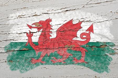 welsh flag: Chalky bandiera gallese dipinta con il gesso a colori su grunge texture di legno