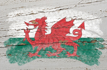 welsh flag: Chalky welsh flag painted with color chalk on grunge wooden texture