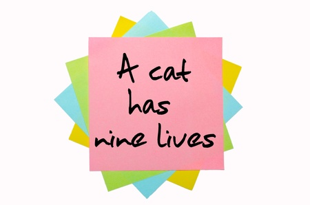 text A cat has nine lives written by hand font on bunch of colored sticky notes photo
