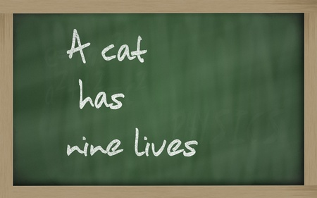 has: Blackboard writings A cat has nine lives