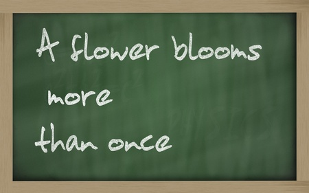 once: Blackboard writings A flower blooms more than once