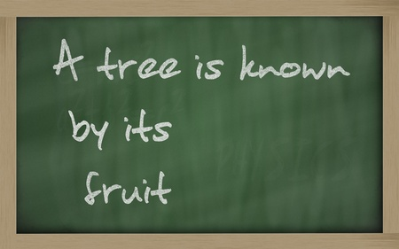 known: Blackboard writings A tree is known by its fruit