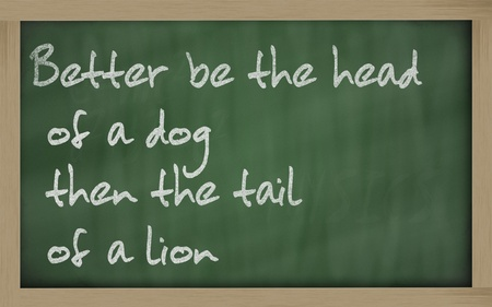 wriiting: Blackboard writings  Better be the head of a dog then the tail of a lion