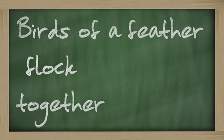 wriiting: Blackboard writings Birds of a feather flock together
