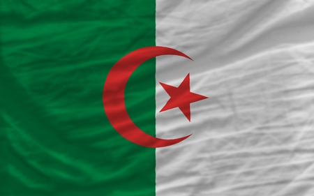 algerian flag: complete national flag of algeria covers whole frame, waved, crunched and very natural looking. It is perfect for background
