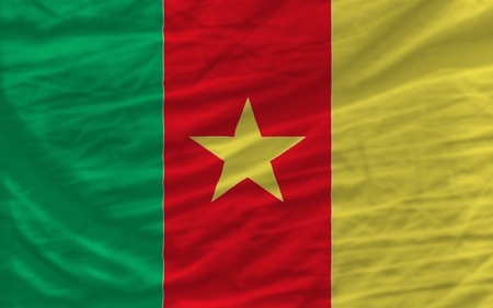 piktogramm: complete national flag of cameroon covers whole frame, waved, crunched and very natural looking. It is perfect for background Stock Photo