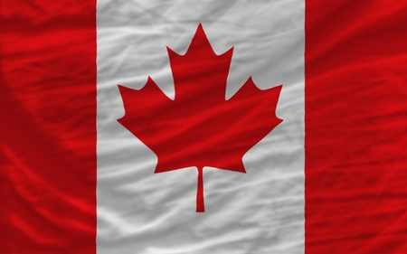piktogramm: complete national flag of canada covers whole frame, waved, crunched and very natural looking. It is perfect for background