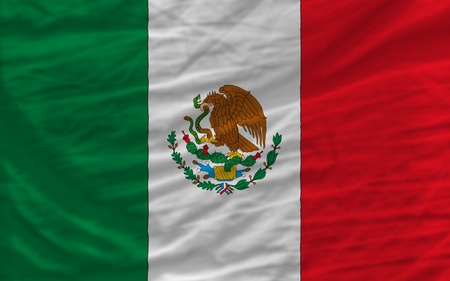 complete national flag of mexico covers whole frame, waved, crunched and very natural looking. It is perfect for background Stock Photo