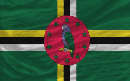 piktogramm: complete national flag of dominica covers whole frame, waved, crunched and very natural looking. It is perfect for background Stock Photo