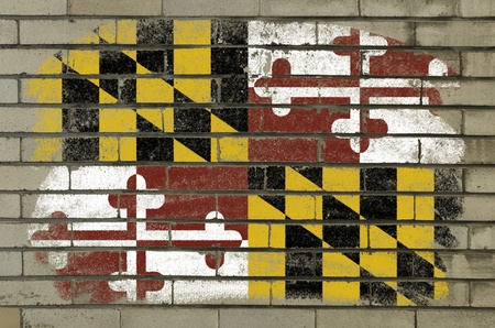 Chalky and grunge american state of maryland flag painted with color chalk on brick wall photo