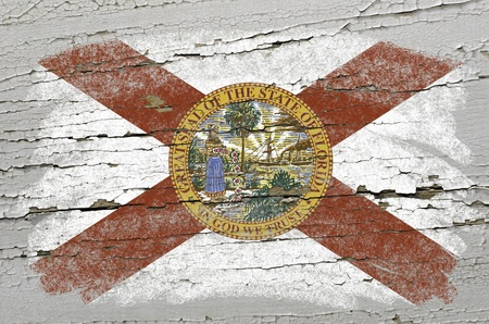 precisely: Chalky american state of florida flag precisely painted with color chalk on grunge wooden texture
