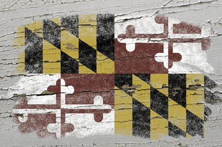 maryland flag: Chalky american state of maryland flag precisely painted with color chalk on grunge wooden texture Stock Photo