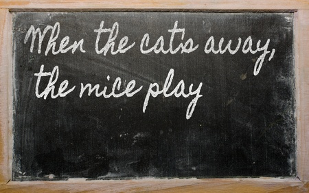 when: handwriting blackboard writings - When the cats away, the mice play Stock Photo