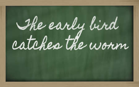 handwriting blackboard writings - The early bird catches the worm photo