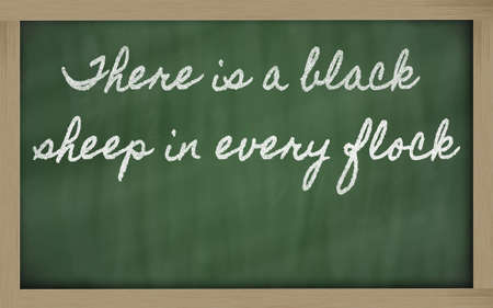 handwriting blackboard writings - There is a black sheep in every flock