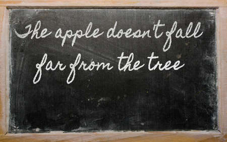 prudent: handwriting blackboard writings - The apple doesnt fall far from the tree Stock Photo