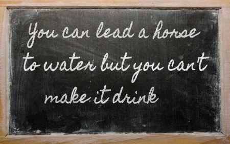prudent: handwriting blackboard writings - You can lead a horse to water but you cant  make it drink