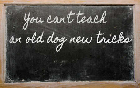 dog sled: handwriting blackboard writings - You cant teach an old dog new tricks