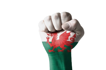 Low key picture of a fist painted in colors of wales flag Stock Photo - 12981733