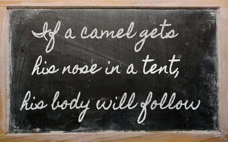 handwriting blackboard writings - If a camel gets his nose in a tent, his body will follow Stock Photo - 12972262