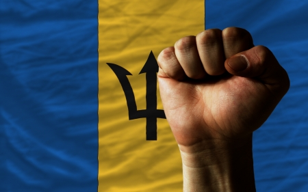 barbadian: complete national flag of barbados covers whole frame, waved, crunched and very natural looking. In front plan is clenched fist symbolizing determination