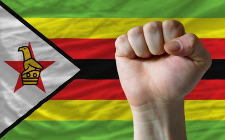 determinism: complete national flag of zimbabwe covers whole frame, waved, crunched and very natural looking. In front plan is clenched fist symbolizing determination