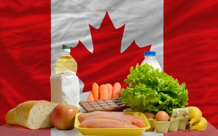 consumerism: complete national flag of canada covers whole frame, waved, crunched and very natural looking. In front plan are fundamental food ingredients for consumers, symbolizing consumerism an human needs