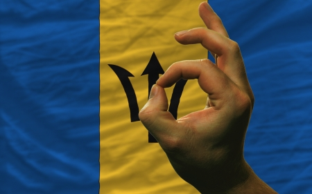 barbadian: man showing excellence or ok gesture in front of complete wavy barbados national flag of  symbolizing best quality, positivity and succes